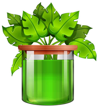 Illustration of a jar with a green plant on a white background