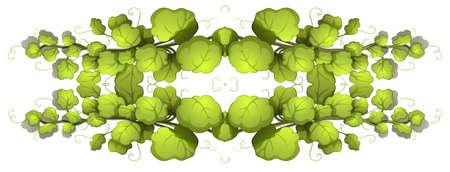 recursos naturales: Ilustración de las plantas de hojas verdes sobre un fondo blanco