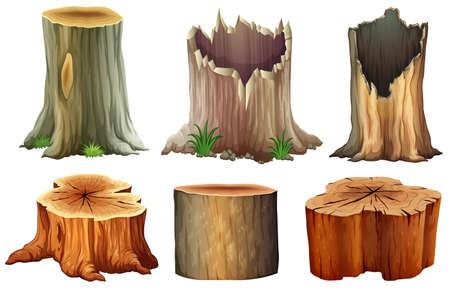 白い背景の上の別の木のイラスト切り株