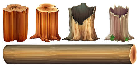 cut logs: Illustration of a log and tree stumps on a white background