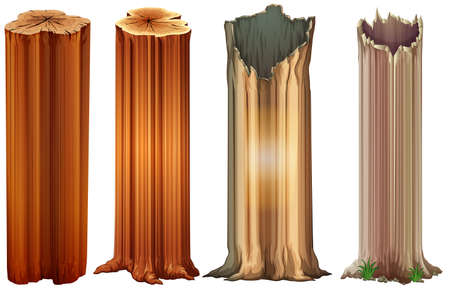 Illustration of the growing tree stumps on a white background