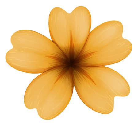 flor aislada: Ilustraci�n de una flor de cinco p�talos de color naranja aislados en blanco