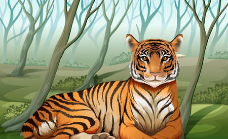 panthera: Illustration of a scary tiger at the forest
