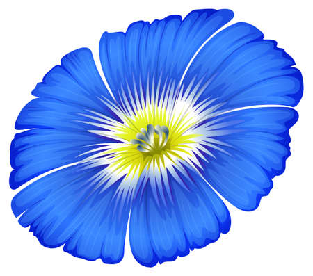 plantae: Illustration of a blue blooming flower on a white background