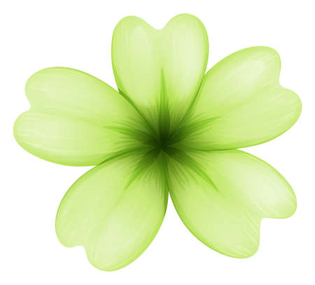 beautification: Illustration of a light green flower on a white background