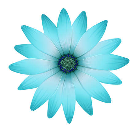 Illustration of a beautiful flower on a white background Illustration