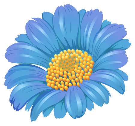 plantae: Illustration of a fresh blue flower on a white background