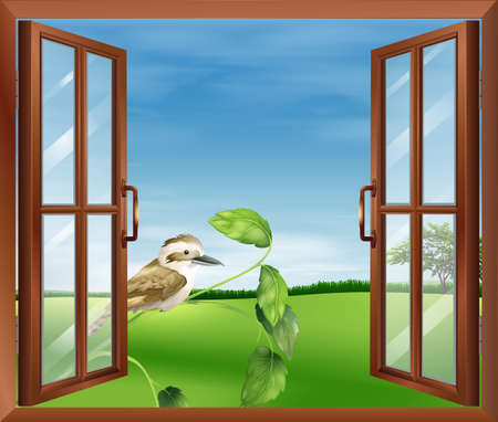Illustration of a window with a view of the bird outside