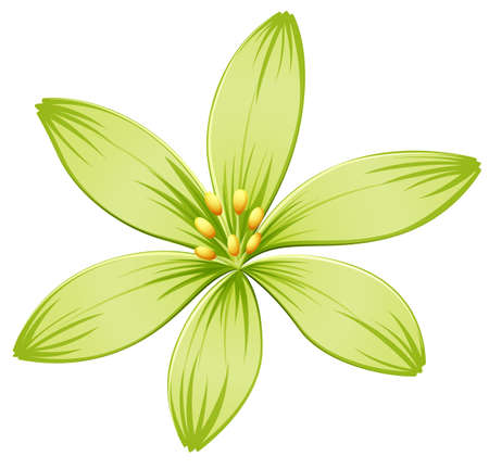 Illustration of a green flower on a white background Illustration