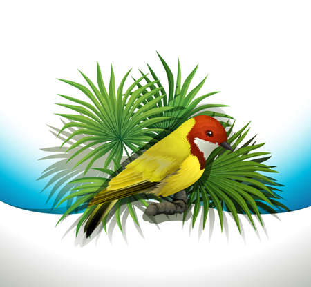 mobbing: Illustration of a bird on a white background