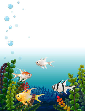 Illustration of the school of fishes under the sea Vector