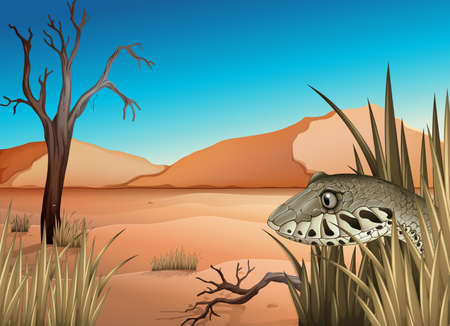 herpetology: Illustration of a reptile in the dessert