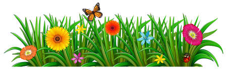 weeds: Illustration of a garden with fresh blooming flowers, a butterfly and a ladybug on a white background