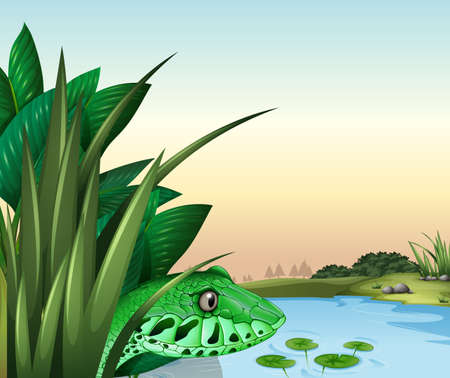 Illustration of a reptile near the pond