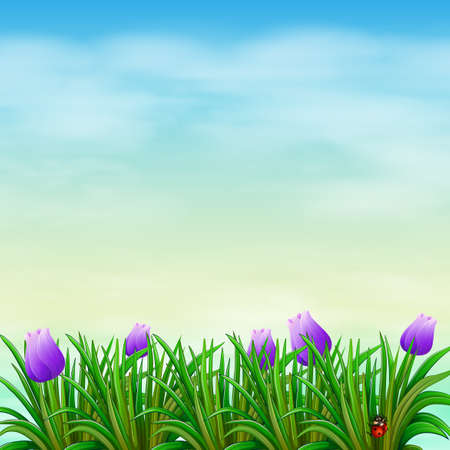 Illustration of a garden with violet flowers Vector