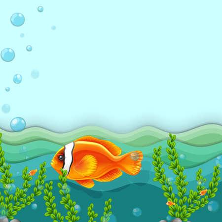 under water: Illustration of an orange fish under the sea