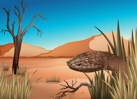 serpentes: Illustration of a snake at the desert Illustration
