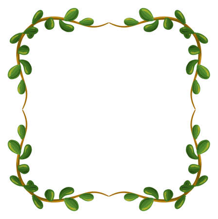beautify: Illustration of a border made of leaves on a white background Illustration