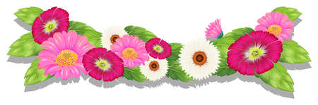plantae: Illustration of the colourful fresh flowers on a white background