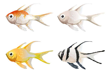 ectothermic: Illustration of the sea creatures on a white background