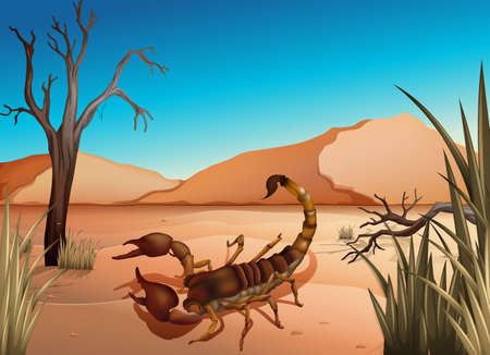 Illustration of a desert with a scorpion