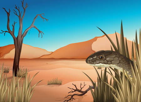 ectothermic: Illustration of a reptile at the desert