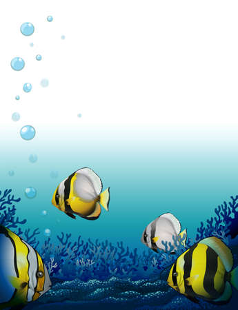 fishes: Illustration of the fishes under the sea Illustration