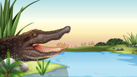 herpetology: Illustration of a reptile near the river Illustration