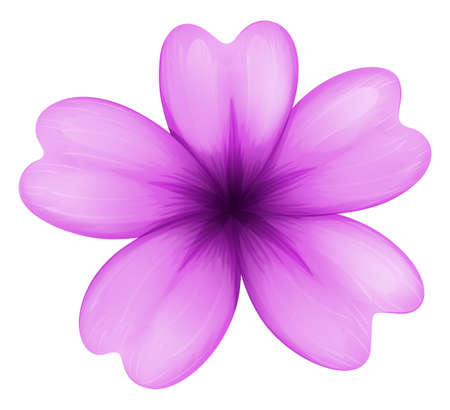 beautification: Illustration of a lavender flower on a white background Illustration