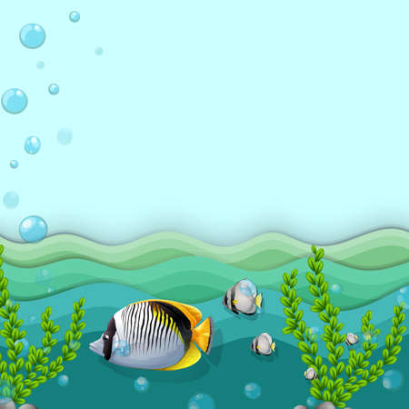 downunder: Illustration of a sea with fishes and seaweeds