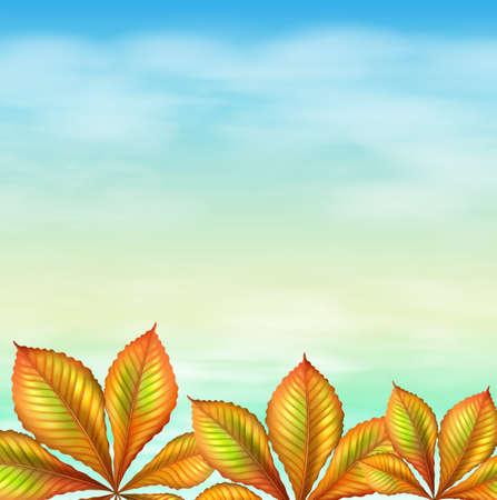 margen: Plantas Ilustración de un cielo azul y de la hoja verde Vectores