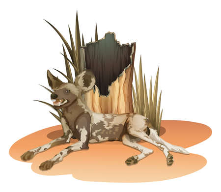 shredded: Illustration of a wild dog near the stump on a white background Illustration