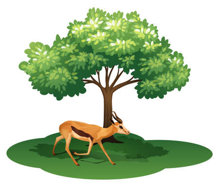 Illustration of a deer under the tree on a white background