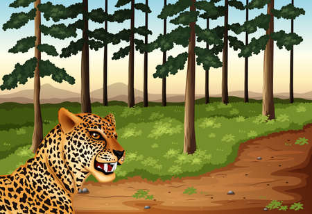 Illustration of a leopard at the forest