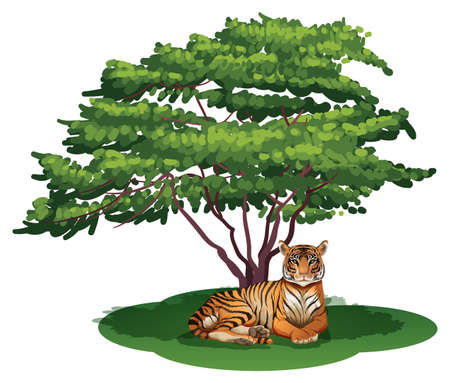 Illustration of a tiger under the tree on a white background