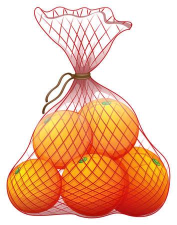 Ilustración de un paquete de naranjas maduras sobre un fondo blanco