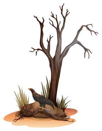 Illustration of a dying tree with a wild bird on a white background Иллюстрация