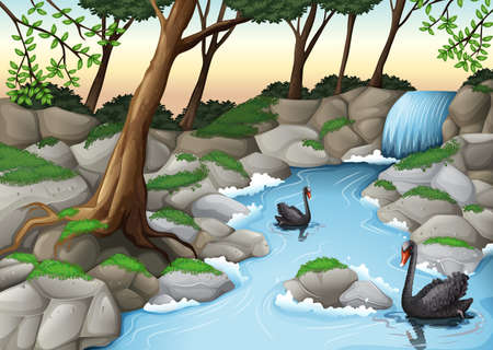 jungle scene: Illustration of a forest with swans Illustration