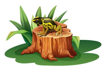 glandular: Illustration of a frog above the stump on a white background Illustration