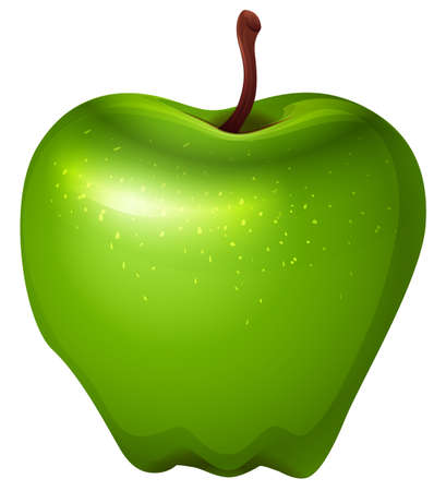 rosids: Illustration of a crunchy green apple on a white background