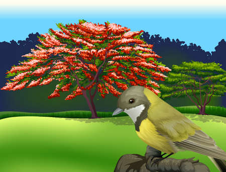 Illustration of a bird at the branch of a tree
