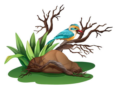 Illustration of a bird at the branch of a tree on a white background
