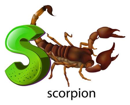 lllustration: lllustration of a letter S on a white background