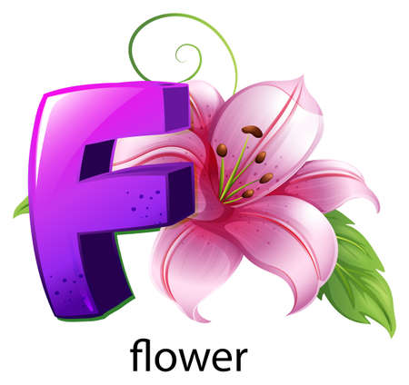 plantae: lllustration of a flower and a letter F on a white background Illustration