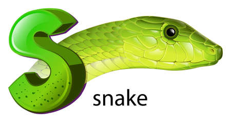 serpentes: lllustration of a snake and a letter S on a white background Illustration
