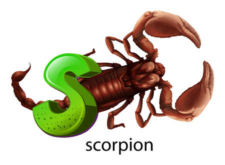 arthropoda: Illustration of a letter S on a white background