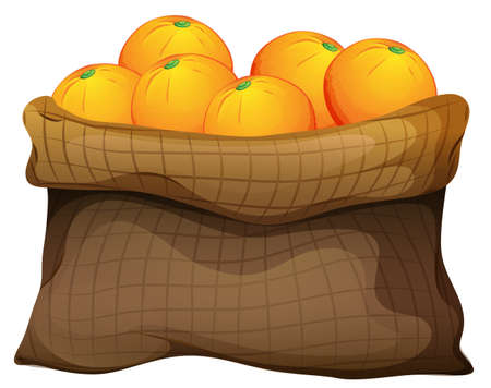 inexpensive: Illustration of a sack of oranges on a white background