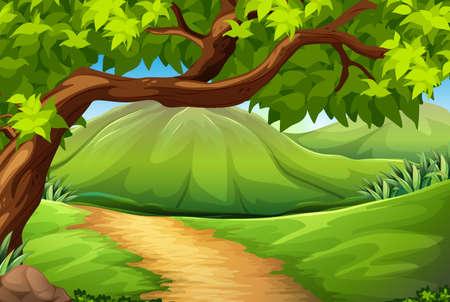 green environment: Illustration of a green environment Illustration