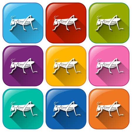 Illustration of the insect icons on a white background