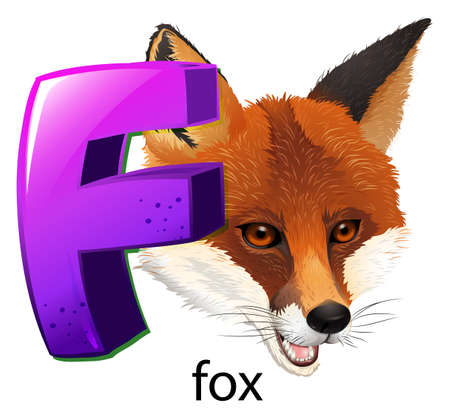 omnivorous: Illustration of a letter F for fox on a white background